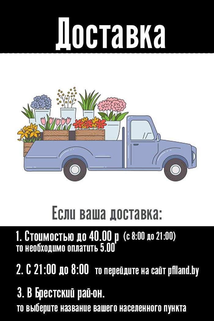 Доставка за город